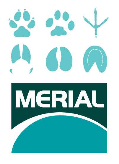 logos_merial